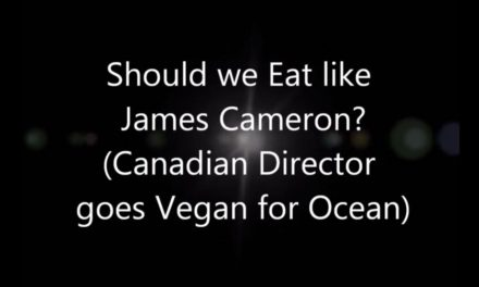 Should we all eat Vegan like James Cameron?