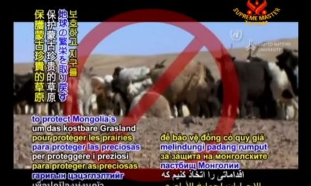 Mongolia's Grasslands: Effects of Livestock Overgrazing