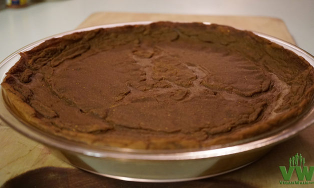 Vegan Crustless Pumpkin Pie: Just in time for the Holidays!
